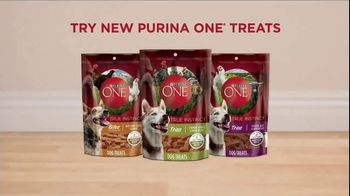 Purina ONE SmartBlend True Instinct TV Spot, 'Evolved' - Thumbnail 8