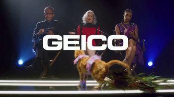 GEICO TV Spot, 'Lifetime: Cats on the Catwalk' - Thumbnail 9