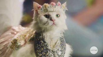 GEICO TV Spot, 'Lifetime: Cats on the Catwalk' - Thumbnail 6