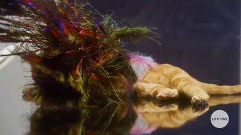 GEICO TV Spot, 'Lifetime: Cats on the Catwalk' - Thumbnail 8