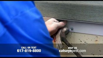 Catseye Pest Control TV Spot, 'Silly Squirrel' - Thumbnail 8