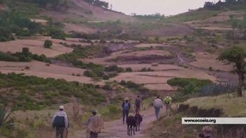 Ecosia TV Spot, 'Growing Community' - Thumbnail 6