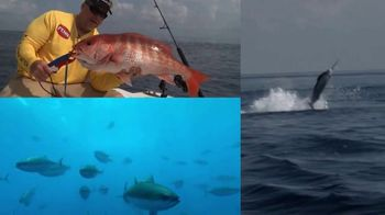 Crocodile Bay Sport Fishing & Expeditions TV Spot, 'Favorite Place to Be' - Thumbnail 4