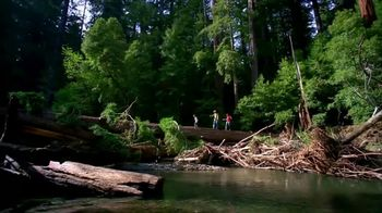 Bass Pro Shops TV Spot, 'That Trail That Never Ends: Gift Card' - Thumbnail 2