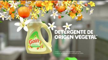 Gain Botanicals TV Spot, 'Aromas irresistibles' [Spanish] - Thumbnail 8