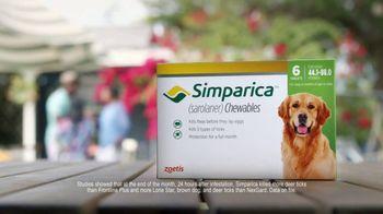 Simparica TV Spot, 'Flea and Tick' - Thumbnail 6