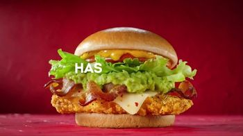 Wendy's Southwest Avocado Chicken Sandwich TV Spot, 'Takes You Southwest'