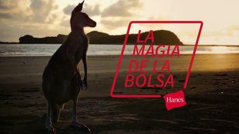 Hanes TV Spot, 'La magia de la bolsa' [Spanish]