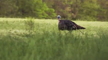 Hunters Specialties Strut 2018 TV Spot, 'Bird Calls'