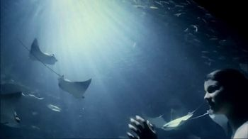 SeaWorld TV Spot, 'Summer 2018: Experience Real' - Thumbnail 10