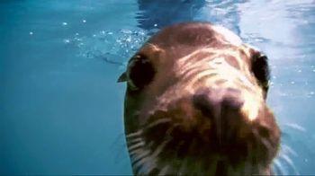 SeaWorld TV Spot, 'Summer 2018: Experience Real' - Thumbnail 5