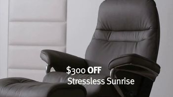 Ekornes Stressless TV Spot, 'Come Together'