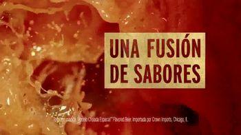 Modelo Chelada TV Spot, 'El modelo para todas las otras cheladas' [Spanish] - Thumbnail 5