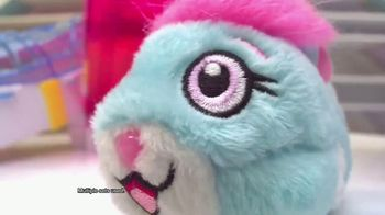 Zhu Zhu Pets TV Spot, 'They're Back'