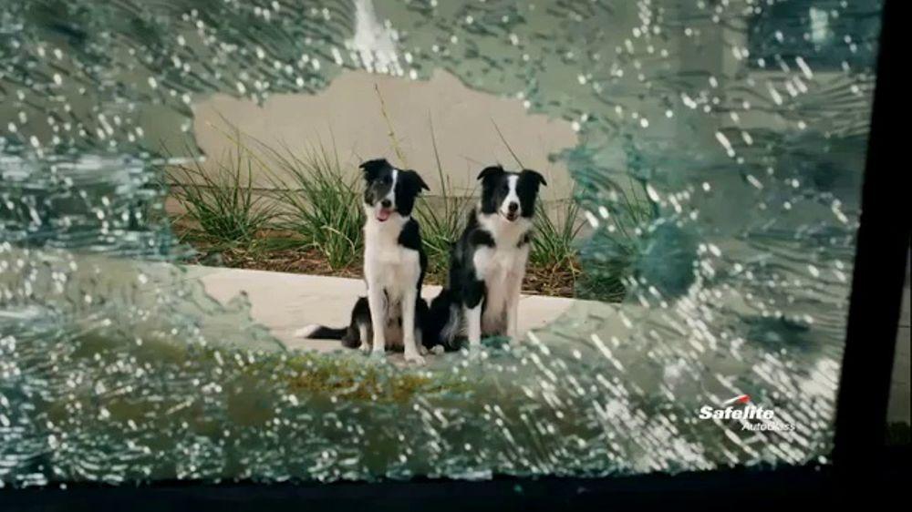 Safelite Auto Glass TV Commercial, 'Furry Sidekicks'