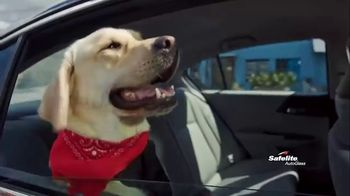 Safelite Auto Glass TV Spot, 'Furry Sidekicks' - Thumbnail 1