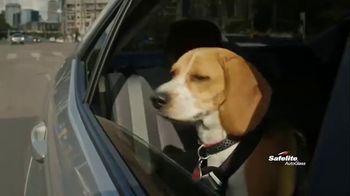 Safelite Auto Glass TV Spot, 'Furry Sidekicks' - Thumbnail 2