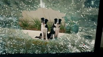 Safelite Auto Glass TV Spot, 'Furry Sidekicks'