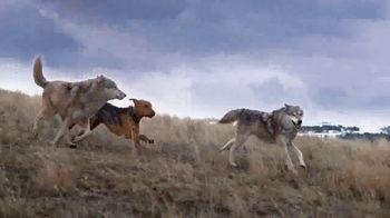 Blue Buffalo BLUE Wilderness TV Spot, 'Wolf Dreams: Single Servings' - Thumbnail 2