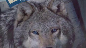 Blue Buffalo BLUE Wilderness TV Spot, 'Wolf Dreams: Single Servings' - Thumbnail 4