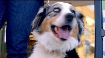VIP Pet Care TV Spot, 'Look for us on NBC and Telemundo' [Spanish] - Thumbnail 1