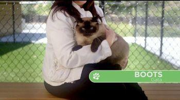VIP Pet Care TV Spot, '2017 Clear the Shelters Adoption Event' [Spanish] - Thumbnail 3