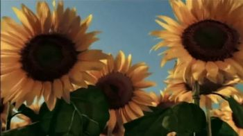 Moen Magnetix TV Spot, 'Inspired by attraction. Innovated by Moen.' - Thumbnail 4