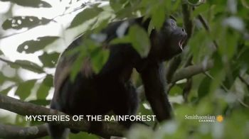 GEICO TV Spot, 'Smithsonian Channel: Mysteries of the Rainforest' - 18 commercial airings