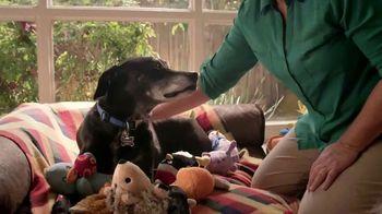 Blue Buffalo TV Spot, 'Pet Cancer Awareness 2017' - Thumbnail 3