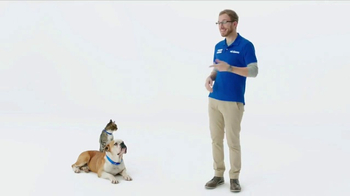 PetSmart TV Spot, 'Zoey and Bo' - Thumbnail 1