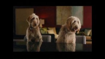 Rover.com TV Spot, 'Meet the Dog People' - Thumbnail 1