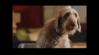 Rover.com TV Spot, 'Meet the Dog People' - Thumbnail 3