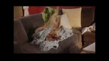 Rover.com TV Spot, 'Meet the Dog People' - Thumbnail 5