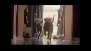 Rover.com TV Spot, 'Meet the Dog People' - Thumbnail 8