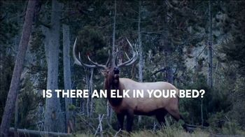 Sleep Number TV Spot, 'Elk in Your Bed: Final Clearance' - Thumbnail 2