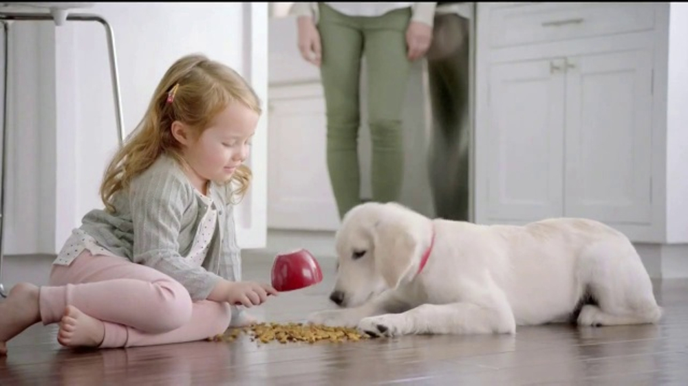 Purina Dog Food Commercial Duck