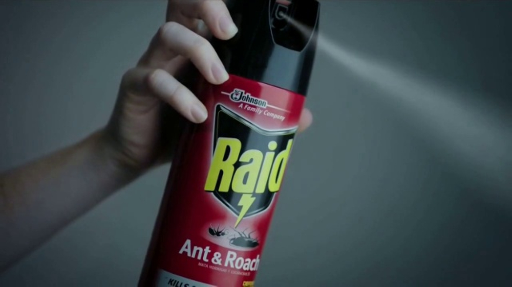 Raid TV Commercial, 'Intruso'
