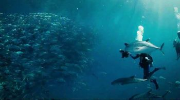 Mission Blue TV Spot, 'Fight for Healthy Oceans' - Thumbnail 2