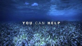 Mission Blue TV Spot, 'Fight for Healthy Oceans' - Thumbnail 8