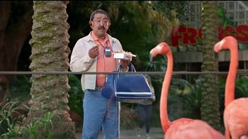 Popeyes $5 Butterfly Shrimp Tackle Box TV Spot, 'Los flamencos' [Spanish] - 23 commercial airings