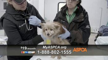 ASPCA TV Spot, 'Carly's Life' - Thumbnail 10