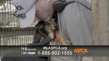 ASPCA TV Spot, 'Carly's Life' - Thumbnail 6