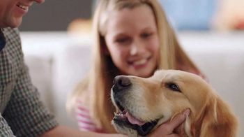 PetComfort Feeding System TV Spot, 'We Love Our Pets'