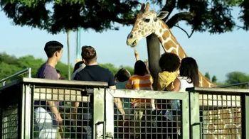 Busch Gardens TV Spot, 'A Whole Other World Awaits' - Thumbnail 3