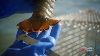Red Lobster TV Spot, 'Sustainability' - Thumbnail 8