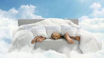 The Company Store LaCrosse Comforters TV Spot, 'Best Friend' - Thumbnail 10