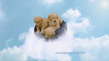 The Company Store LaCrosse Comforters TV Spot, 'Best Friend' - Thumbnail 8