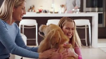 PetComfort Feeding System TV Spot, 'The New Feeding System'