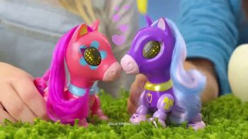 Zoomer Zupps Pretty Ponies TV Spot, 'Pony Song' - Thumbnail 4