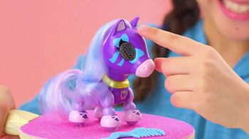 Zoomer Zupps Pretty Ponies TV Spot, 'Pony Song' - Thumbnail 5